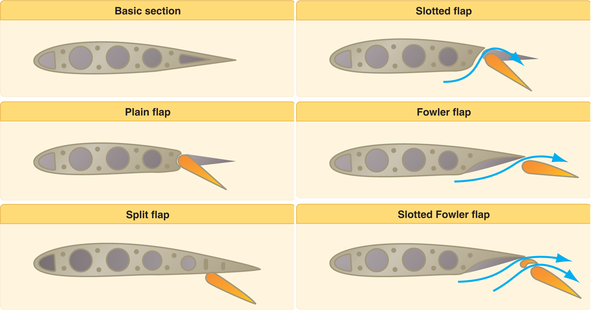 Five common types of flaps.