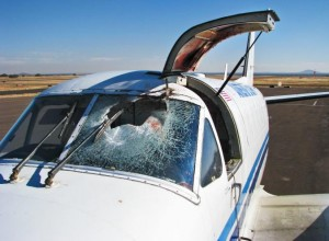 Damage from a bird strike.